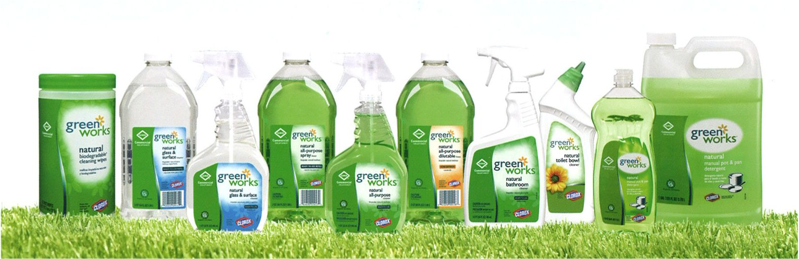 Green cleaning services dallas house green cleaning for Green products for the home