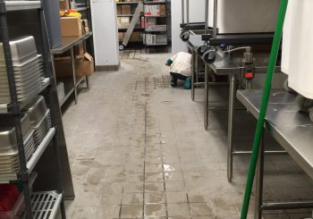 Blue Sushi Restaurant Floors Stripping and Sealing 007 be30dad8bec1a7e72bd24c0f16d8021d 350x245 100 crop Blue Sushi Restaurant Floors Stripping and Sealing
