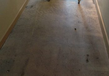 Office Concrete Floors Cleaning Stripping Sealing Waxing in Dallas TX 29 14eb2e7ec06451cb1b7939761816a89e 350x245 100 crop Office Concrete Floors Cleaning, Stripping, Sealing & Waxing in Dallas, TX